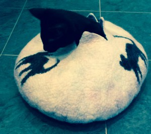 Felted Cat Bowl