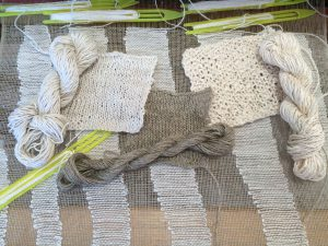 Spin, Weave and Knit with Flora